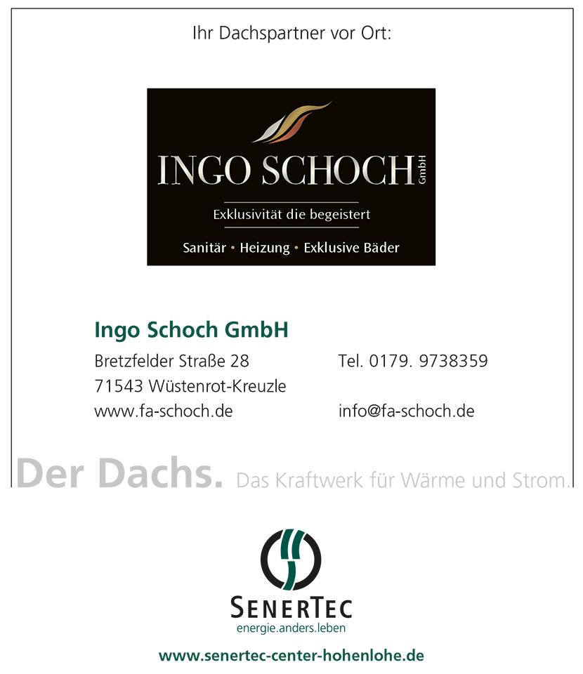 Dachs Partner, Ingo Schoch